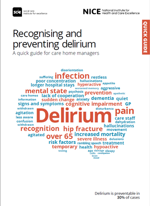 front cover of delerium quick guide