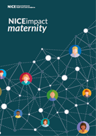 Front cover of the maternity impact report.