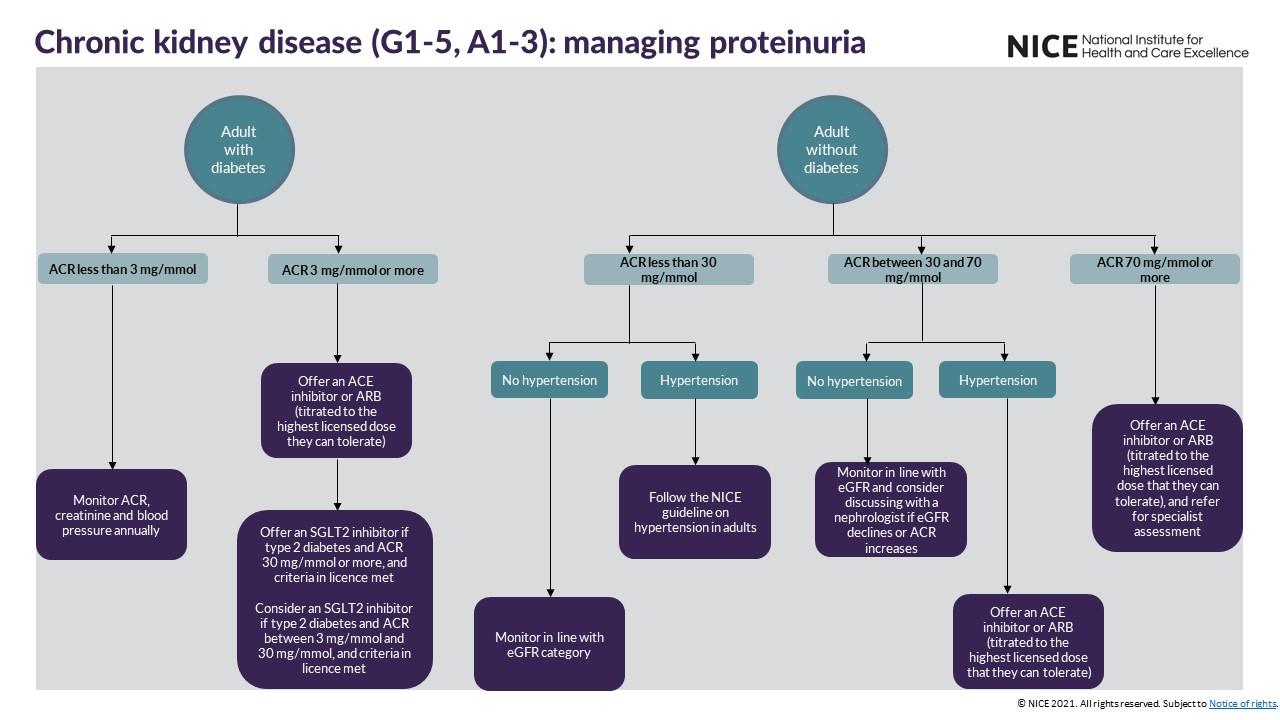 View managing proteinuria visual summary